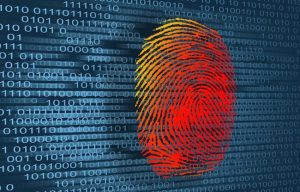 demand for identity theft protection